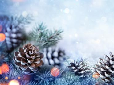 Winter Holiday Activities Header