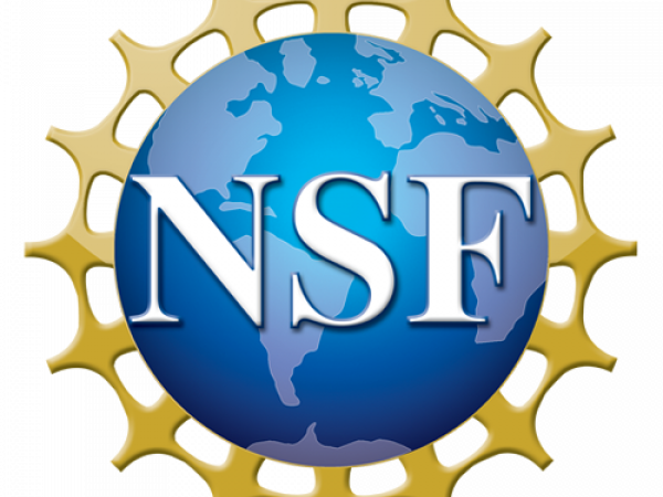 National Science Foundation's picture