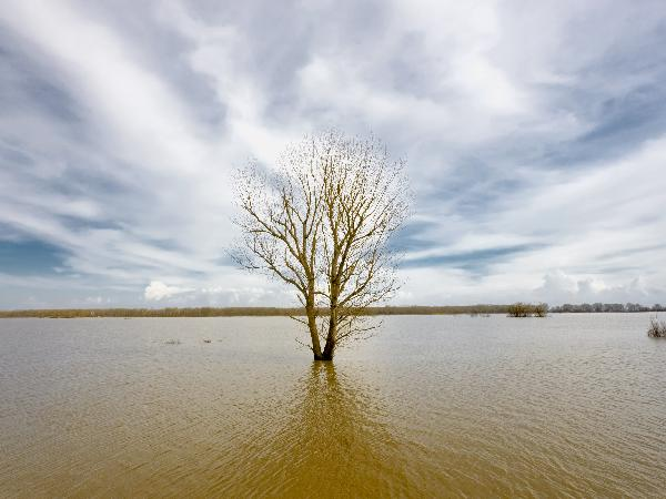 flood - istock purchase