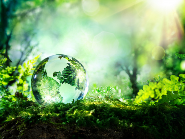 Celebrate Earth Day with Climate Celebrations