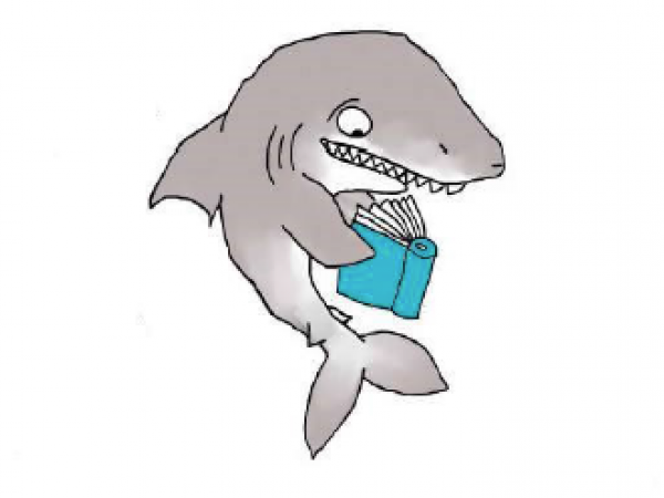 Little Shark Book