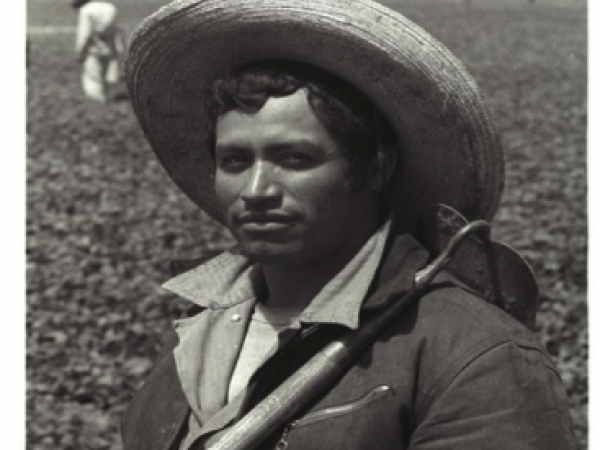 The Price of Labor: Contextualizing and Humanizing the Braceros