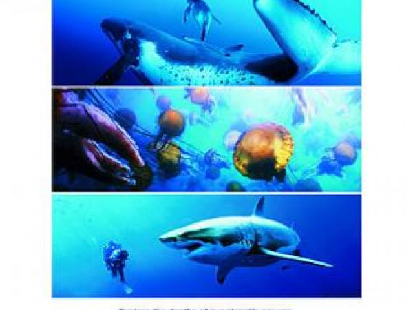 DisneyNature Oceans Educator Guide