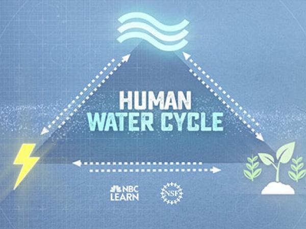 Human Water Cycle: Agriculture