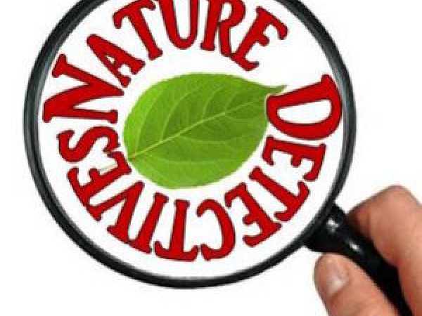 Nature Detectives: Science and Nature Activities for the Outdoors