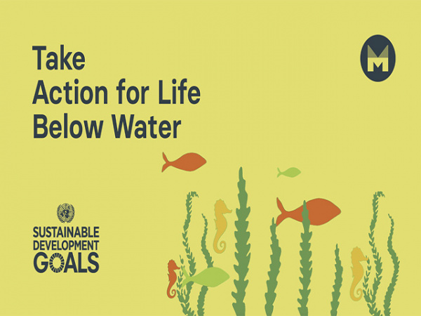 Take Action for Life Below Water (Ages 11 - 17)