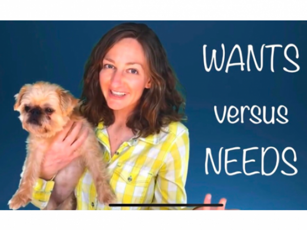 Wants Versus Needs Lesson for Kids