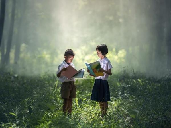 Social and Emotional Learning Through Diverse Literature