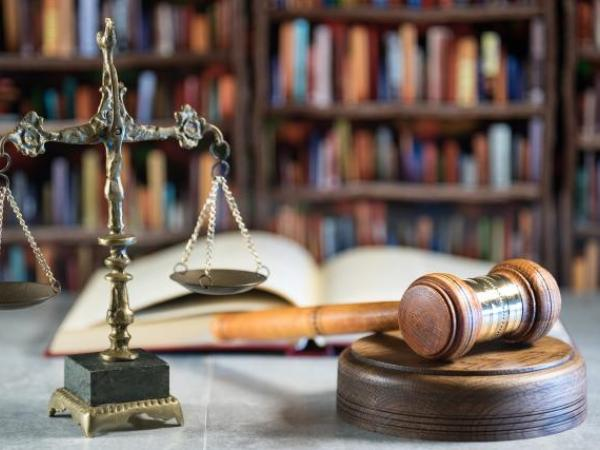 Role of the courts, Part 2