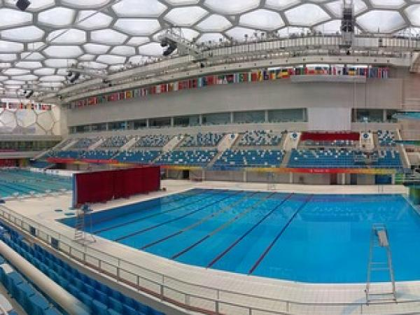 """Science Of The Summer Olympics: """"Fast Pool"""""""